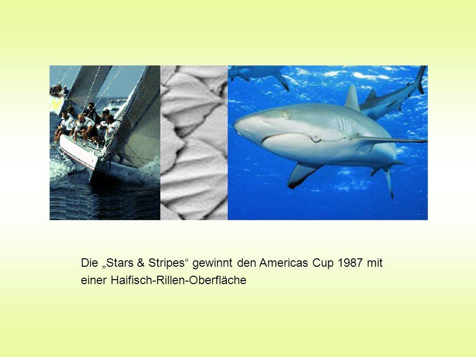 Die Stars & Stripes gewinnt den Americas Cup 1987 mit einer Haifisch-Rillen-Oberfläche
