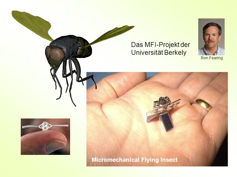 Das MFI-Projekt der Universität Berkely Micromechanical Flying Insect Ron Fearing