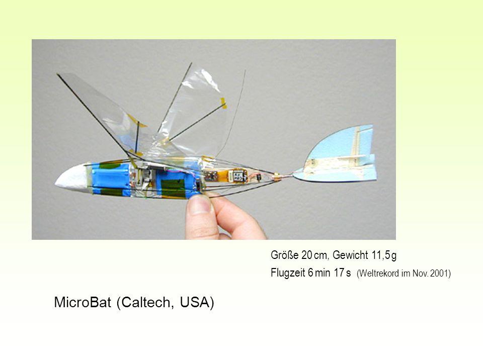 MicroBat (Caltech, USA) Größe 20 cm, Gewicht 11,5 g Flugzeit 6 min 17 s (Weltrekord im Nov. 2001)