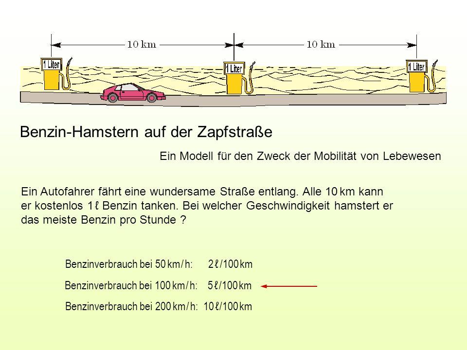 Gewinn [ /h] = ( Tanken [ /km] – Verbrauch [ /km] ) Geschwindigkeit [km/h] Benzinverbrauch bei 50 km / h: 2 /100 km Benzinverbrauch bei 100 km / h: 5 /100 km Benzinverbrauch bei 200 km / h: 10 /100 km Analoge biologische Gewinnfunktion Gewinn [kJ/h] = ( Nahrung [kJ /km] – Flugarbeit [kJ /km] ) Geschwindigkeit [km/h] G = (0,1 – 0,02) · 50 = 4 /h G = (0,1 – 0,05) · 100 = 5 /h G = (0,1 – 0,10) · 200 = 0 /h Zur Q -Minimierung: www.bionik.tu-berlin.de/institut/bibu6.pdf