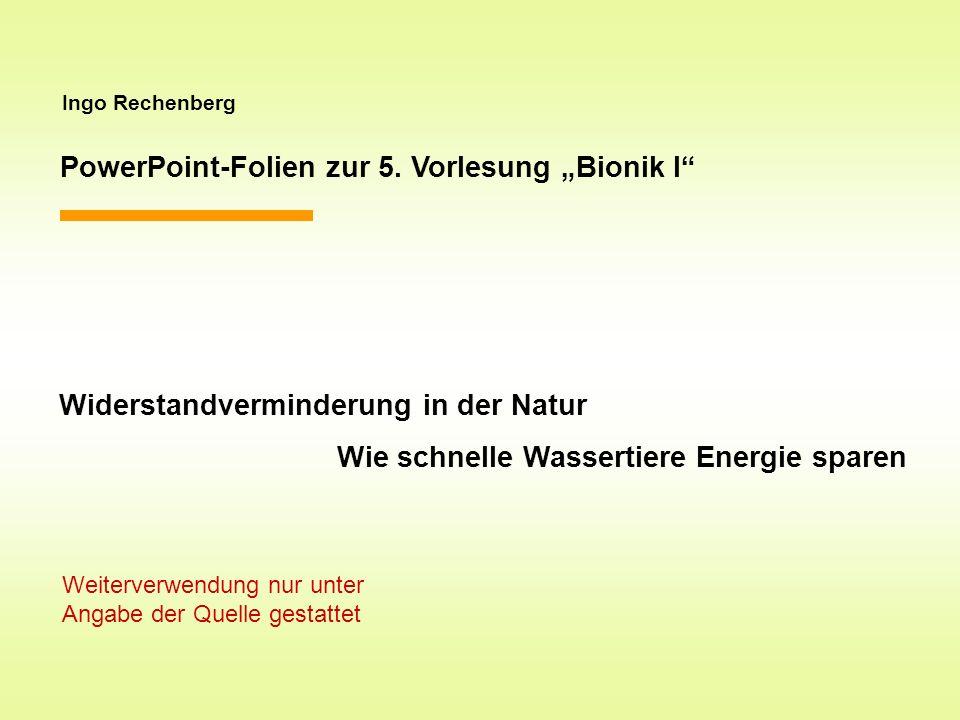 Ingo Rechenberg PowerPoint-Folien zur 5. Vorlesung Bionik I Widerstandverminderung in der Natur Wie schnelle Wassertiere Energie sparen Weiterverwendu