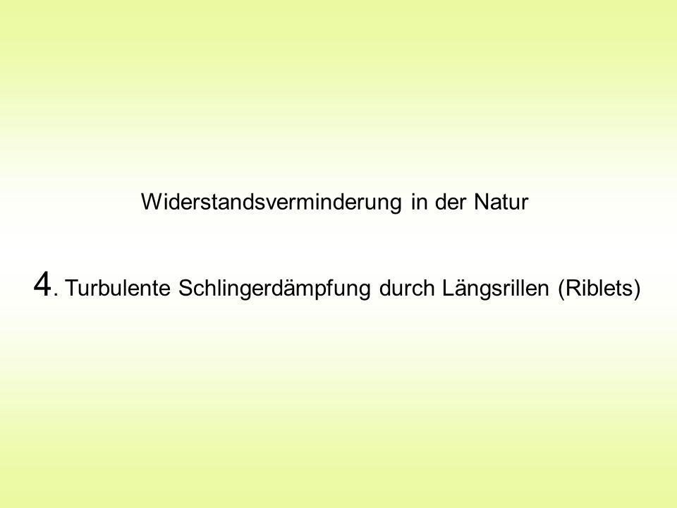 Widerstandsverminderung in der Natur 4. Turbulente Schlingerdämpfung durch Längsrillen (Riblets)