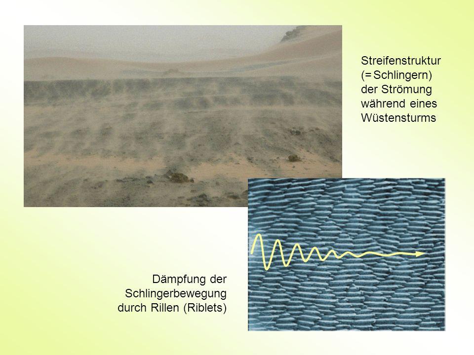 Streifenstruktur (= Schlingern) der Strömung während eines Wüstensturms Dämpfung der Schlingerbewegung durch Rillen (Riblets)