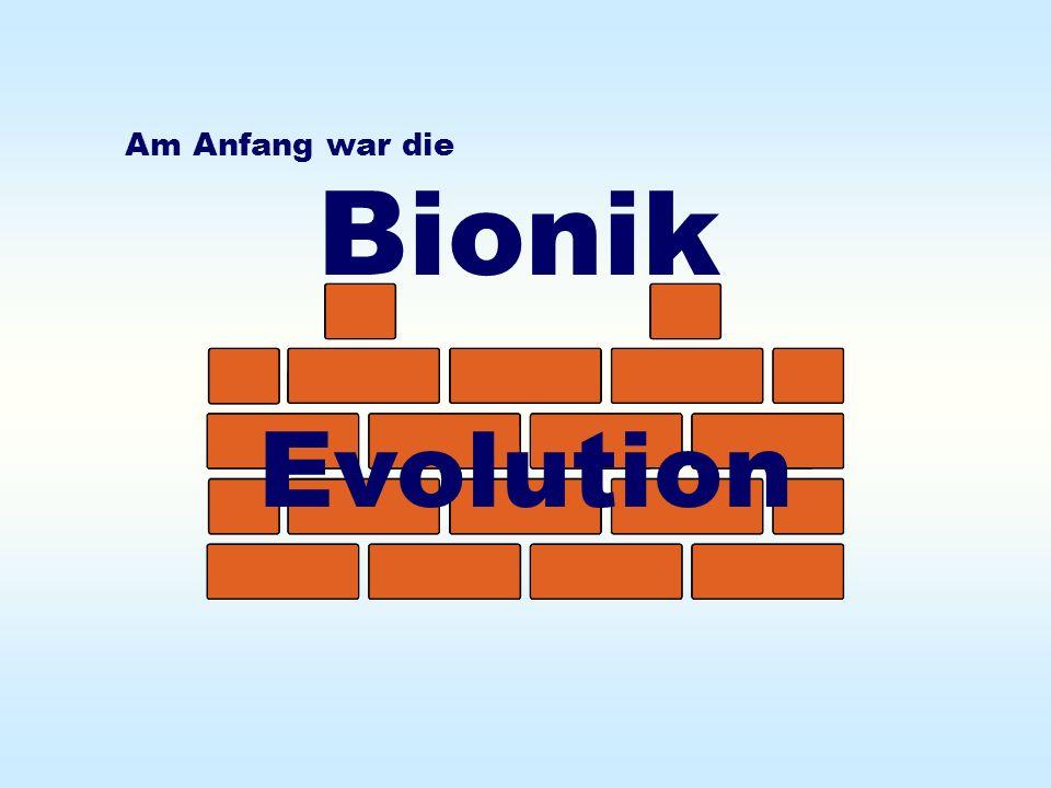 Wie effektiv arbeitet die biologische Evolution .