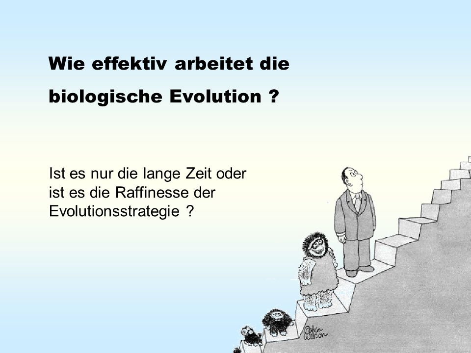Wie effektiv arbeitet die biologische Evolution ? Ist es nur die lange Zeit oder ist es die Raffinesse der Evolutionsstrategie ?