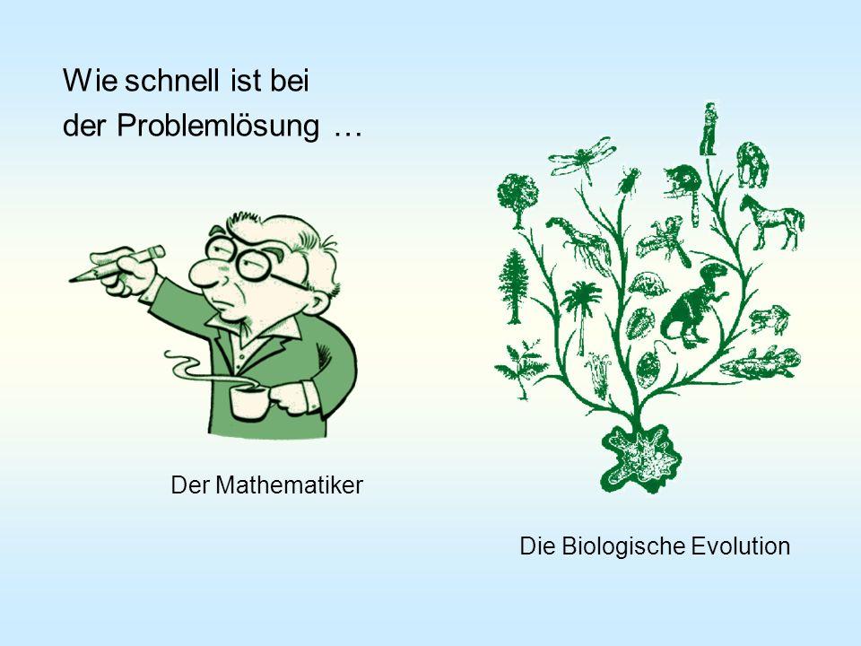 Wie schnell ist bei der Problemlösung … Die Biologische Evolution Der Mathematiker