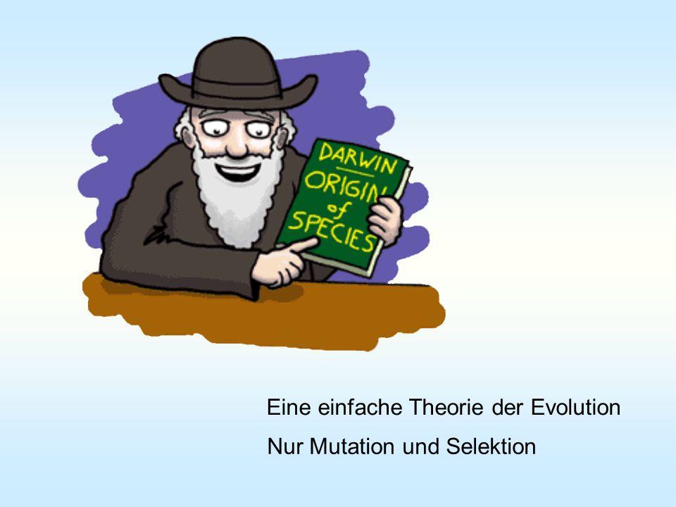 Für n >> 1 Evolutionsstrategie Gradientenstrategie Ausgeklügeltes Handeln kontra Evolution Text
