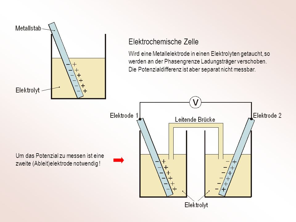 Wird eine Metallelektrode in einen Elektrolyten getaucht, so werden an der Phasengrenze Ladungsträger verschoben.