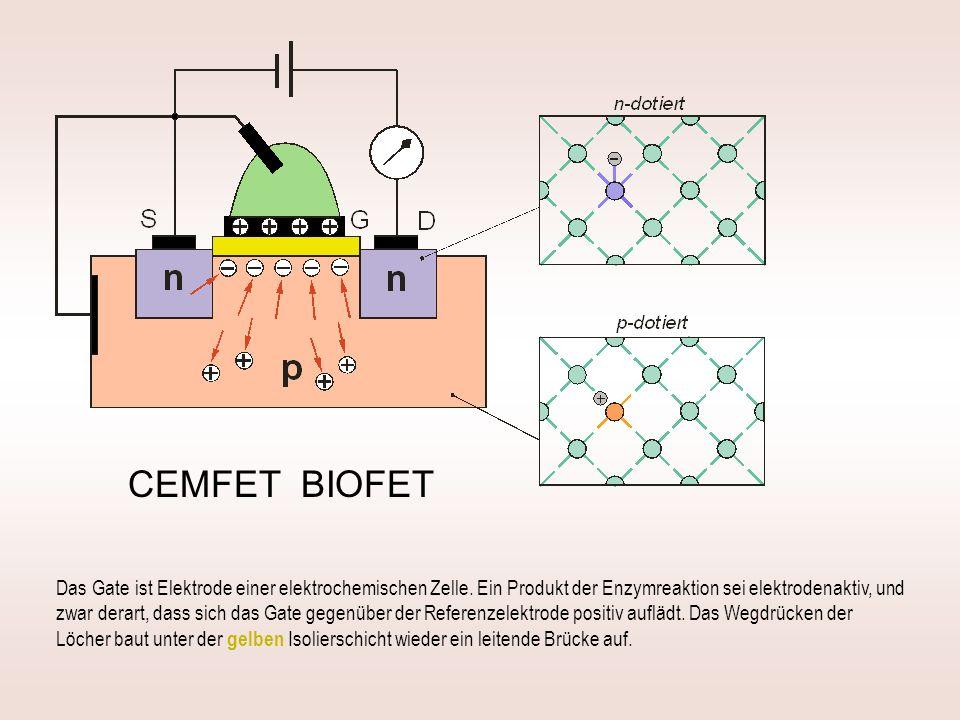 CEMFET BIOFET Das Gate ist Elektrode einer elektrochemischen Zelle.