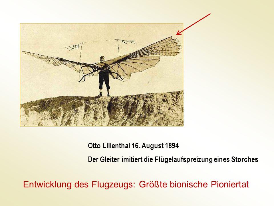 Otto Lilienthal 16. August 1894 Der Gleiter imitiert die Flügelaufspreizung eines Storches Entwicklung des Flugzeugs: Größte bionische Pioniertat