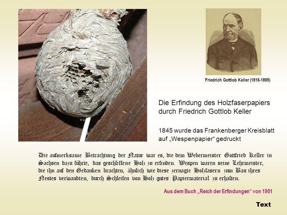 Die Erfindung des Holzfaserpapiers durch Friedrich Gottlob Keller 1845 wurde das Frankenberger Kreisblatt auf Wespenpapier gedruckt Die aufmerksame Be
