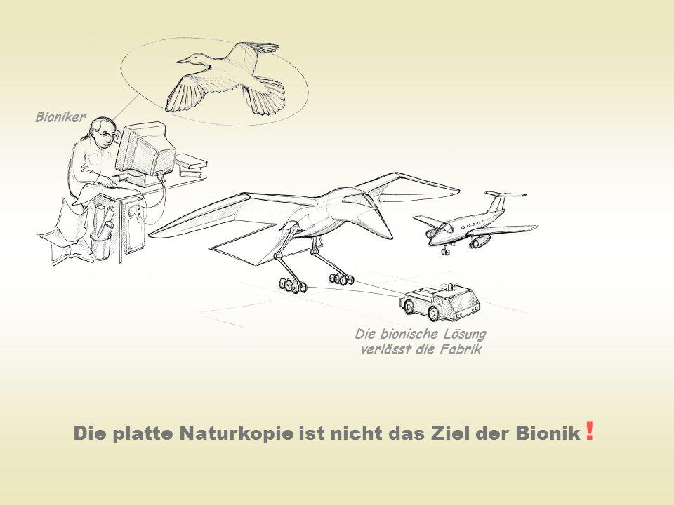 Die platte Naturkopie ist nicht das Ziel der Bionik ! Die bionische Lösung verlässt die Fabrik Bioniker