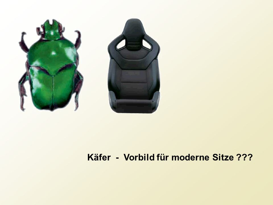 Käfer - Vorbild für moderne Sitze ???