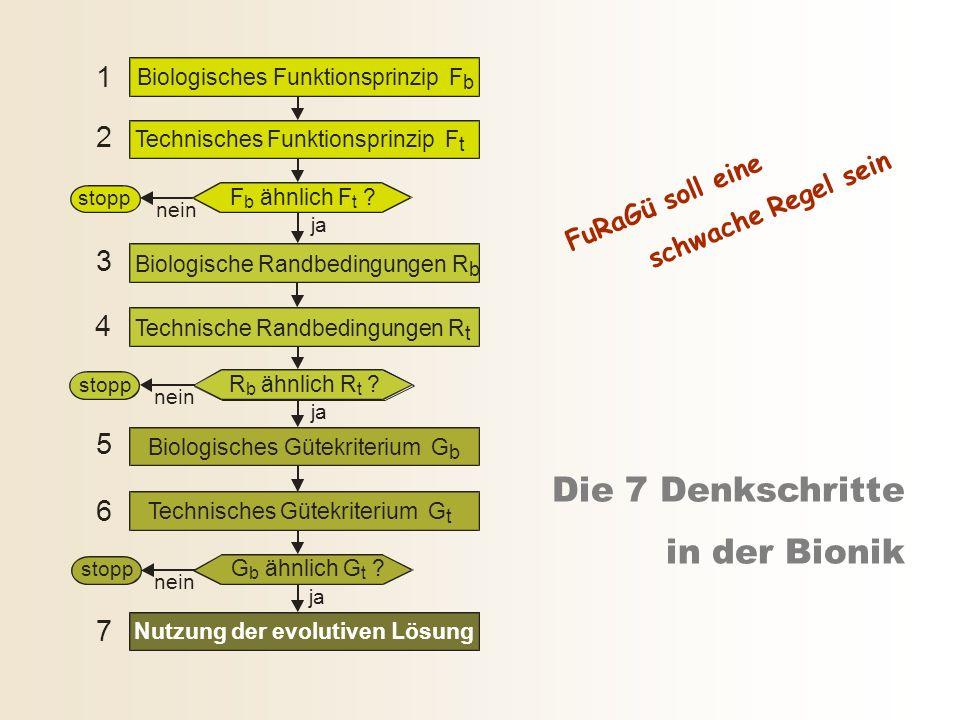 Die 7 Denkschritte in der Bionik 2 3 4 5 6 7 1 Nutzung der evolutiven Lösung Biologisches Funktionsprinzip F b stopp ja nein F b ähnlich F t ? Technis