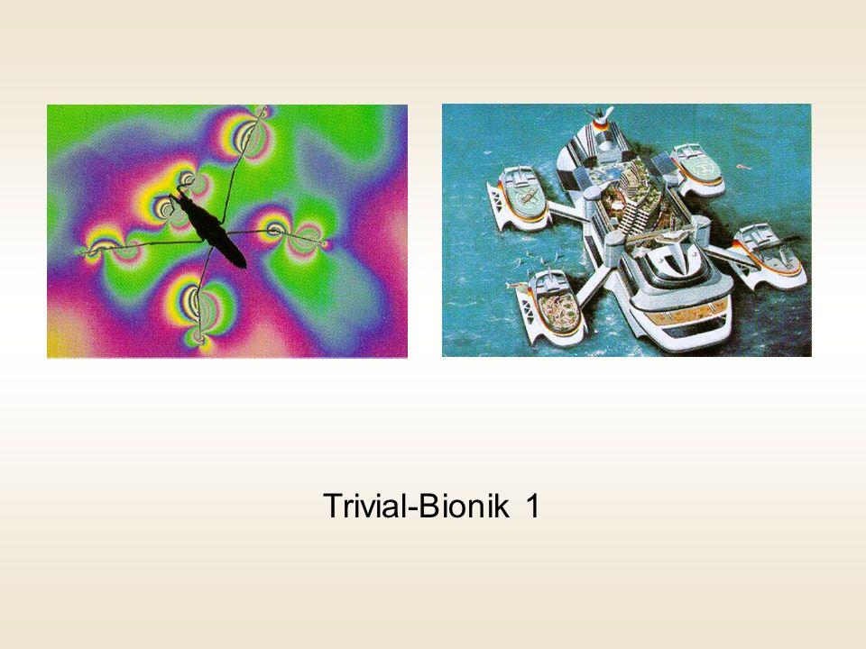 Trivial-Bionik 1