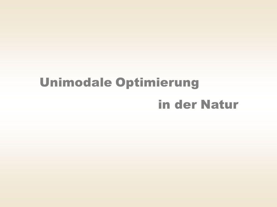 Unimodale Optimierung in der Natur