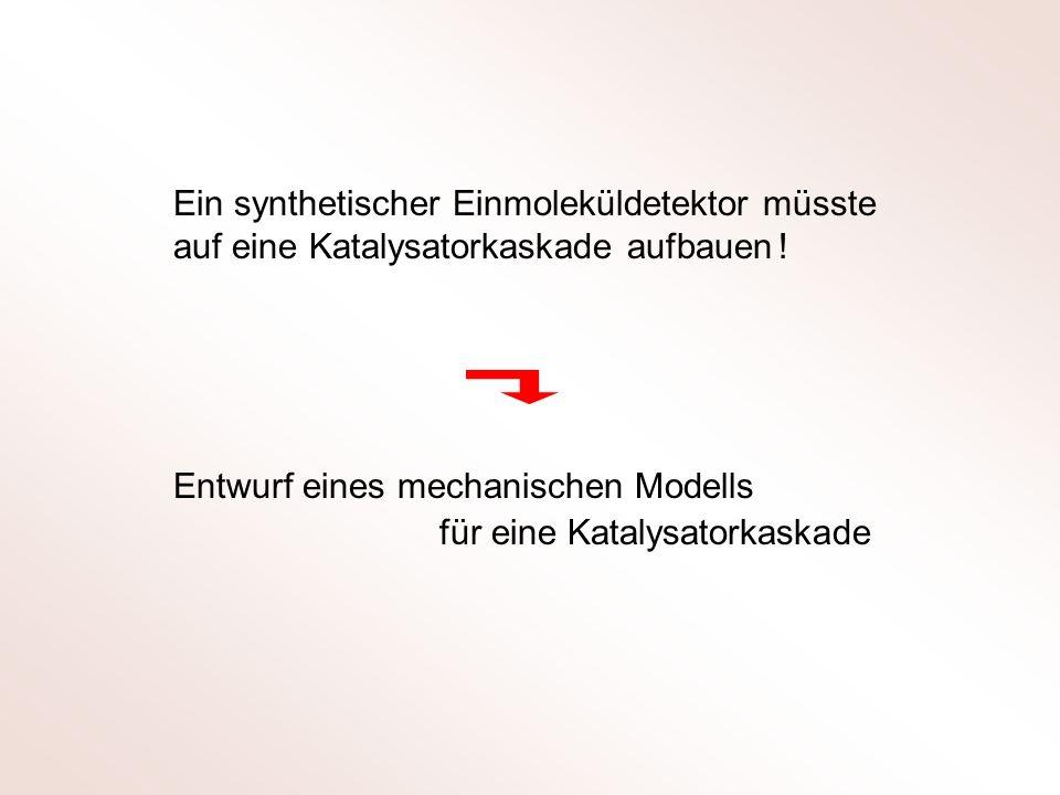 Entwurf eines mechanischen Modells für eine Katalysatorkaskade Ein synthetischer Einmoleküldetektor müsste auf eine Katalysatorkaskade aufbauen !