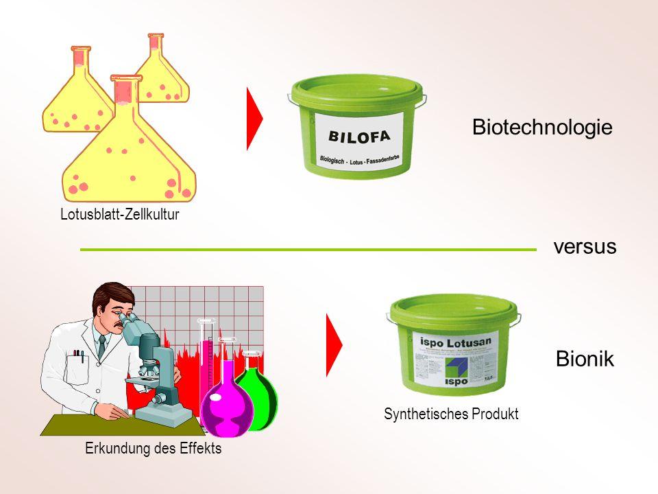 Biotechnologie Bionik versus Lotusblatt-Zellkultur Erkundung des Effekts Synthetisches Produkt