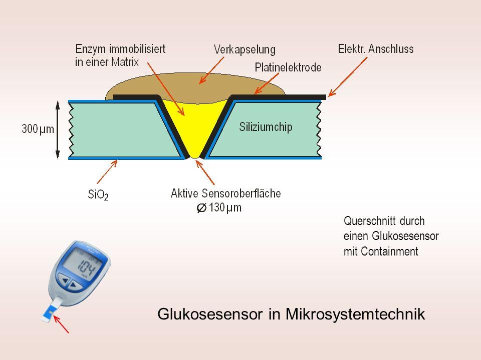 Querschnitt durch einen Glukosesensor mit Containment Glukosesensor in Mikrosystemtechnik
