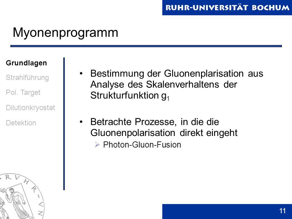 11 Myonenprogramm Bestimmung der Gluonenplarisation aus Analyse des Skalenverhaltens der Strukturfunktion g 1 Betrachte Prozesse, in die die Gluonenpo