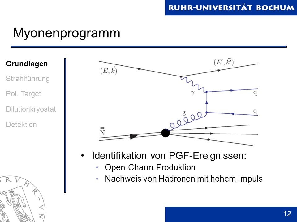12 Myonenprogramm Identifikation von PGF-Ereignissen: Open-Charm-Produktion Nachweis von Hadronen mit hohem Impuls Grundlagen Strahlführung Pol. Targe