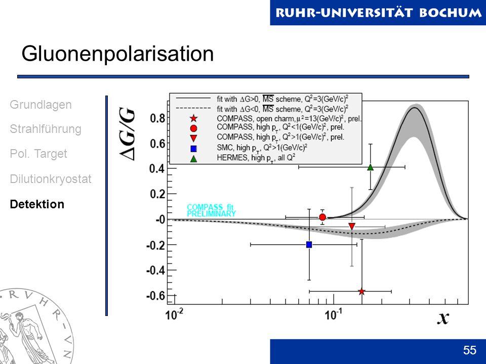 55 Gluonenpolarisation Grundlagen Strahlführung Pol. Target Dilutionkryostat Detektion