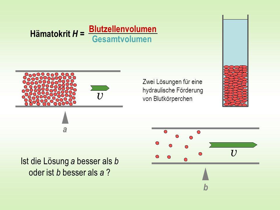 v a b Blutzellenvolumen Gesamtvolumen Hämatokrit H = Ist die Lösung a besser als b oder ist b besser als a ? Zwei Lösungen für eine hydraulische Förde