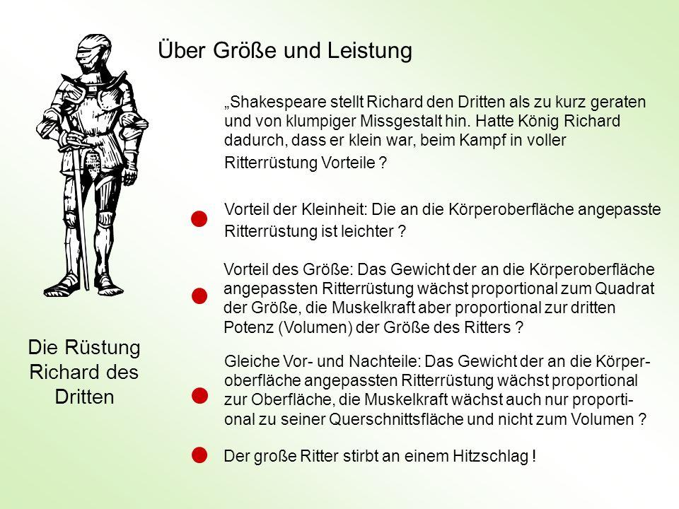 Shakespeare stellt Richard den Dritten als zu kurz geraten und von klumpiger Missgestalt hin. Hatte König Richard dadurch, dass er klein war, beim Kam