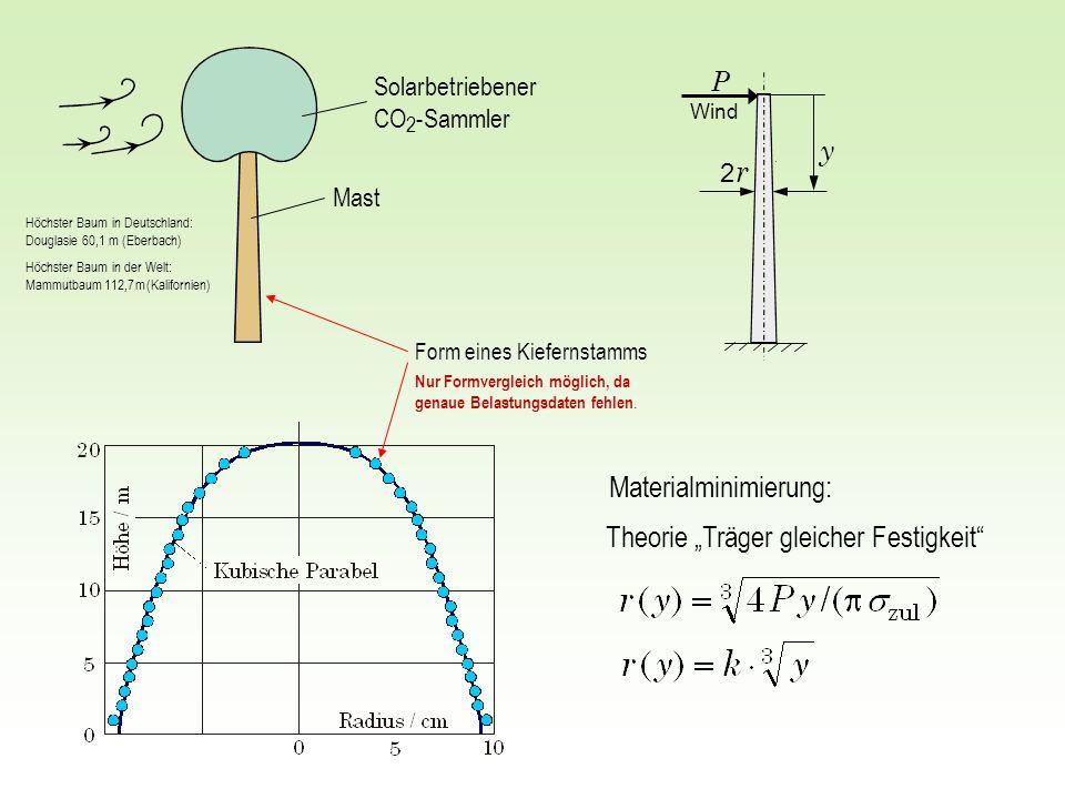 2 r2 r y P Theorie Träger gleicher Festigkeit Form eines Kiefernstamms Solarbetriebener CO 2 -Sammler Mast Materialminimierung: Höchster Baum in Deuts