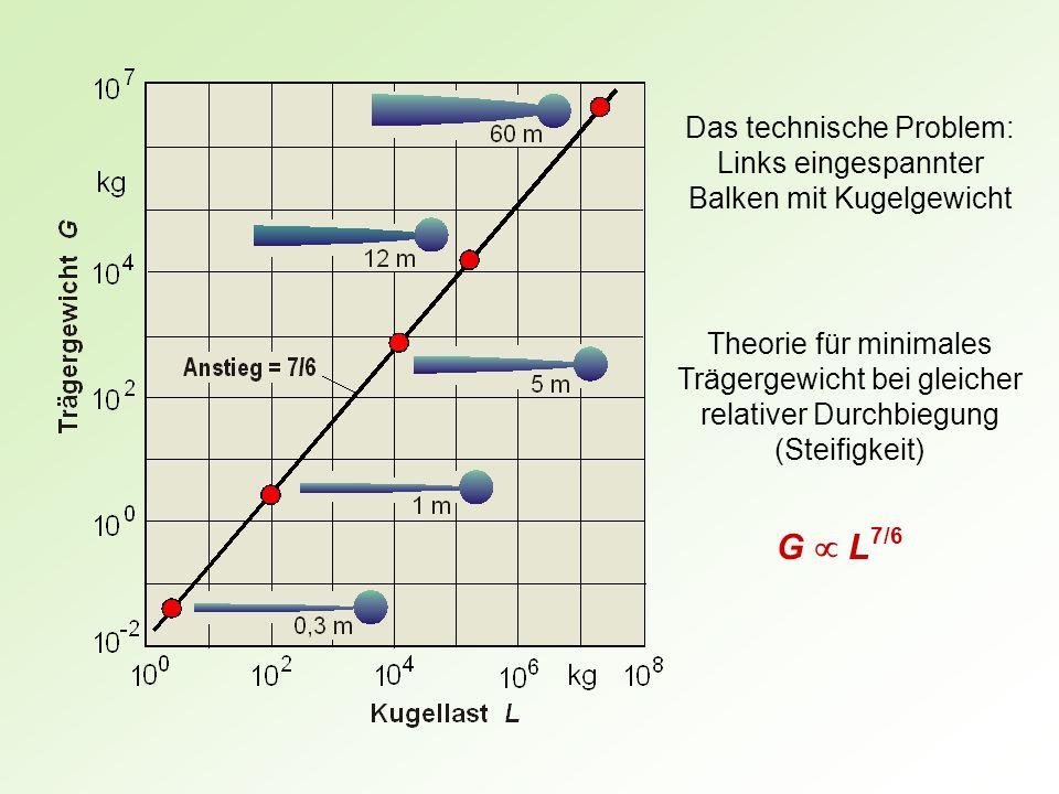 Theorie für minimales Trägergewicht bei gleicher relativer Durchbiegung (Steifigkeit) G L 7/6 Das technische Problem: Links eingespannter Balken mit K