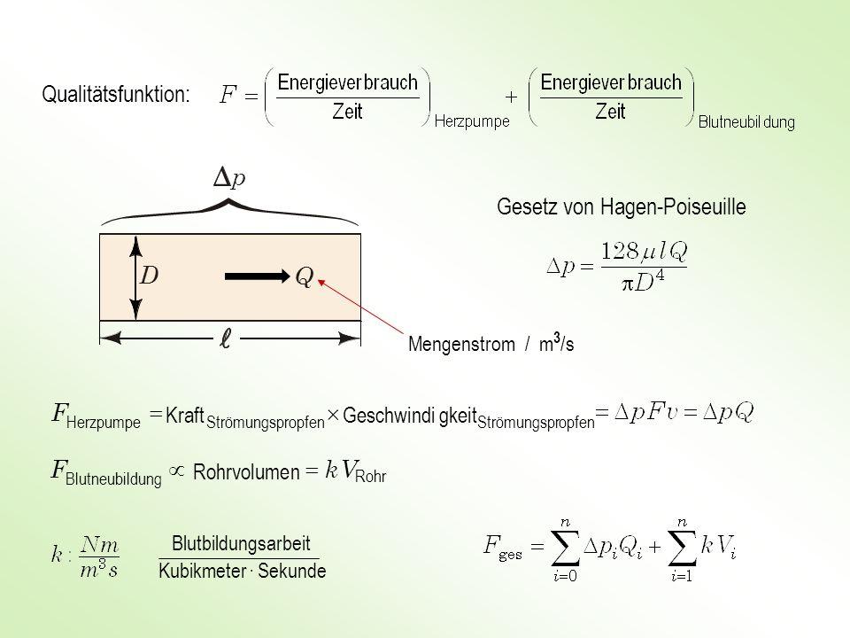 Qualitätsfunktion: Gesetz von Hagen-Poiseuille p D Q Mengenstrom / m 3 /s Blutbildungsarbeit Kubikmeter · Sekunde opfenStrömungspropfenStrömungspr Her