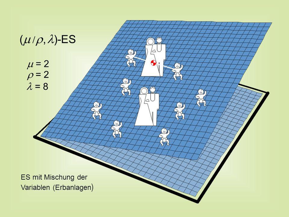 (, )-ES ES mit Mischung der Variablen (Erbanlagen ) = 8 = 2