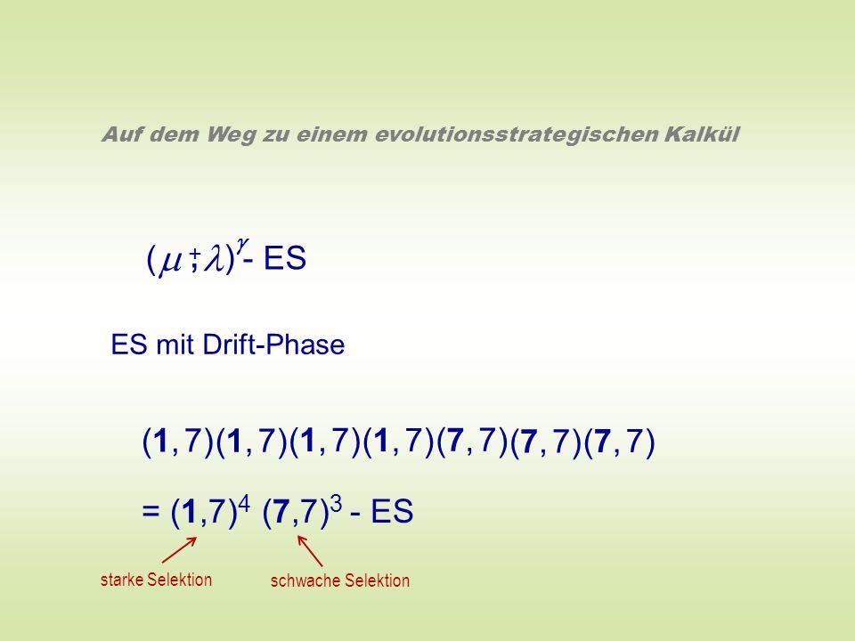( ) - ES +, Auf dem Weg zu einem evolutionsstrategischen Kalkül ES mit Drift-Phase (1, 7) (7, 7) = (1,7) 4 (7,7) 3 - ES starke Selektion schwache Sele