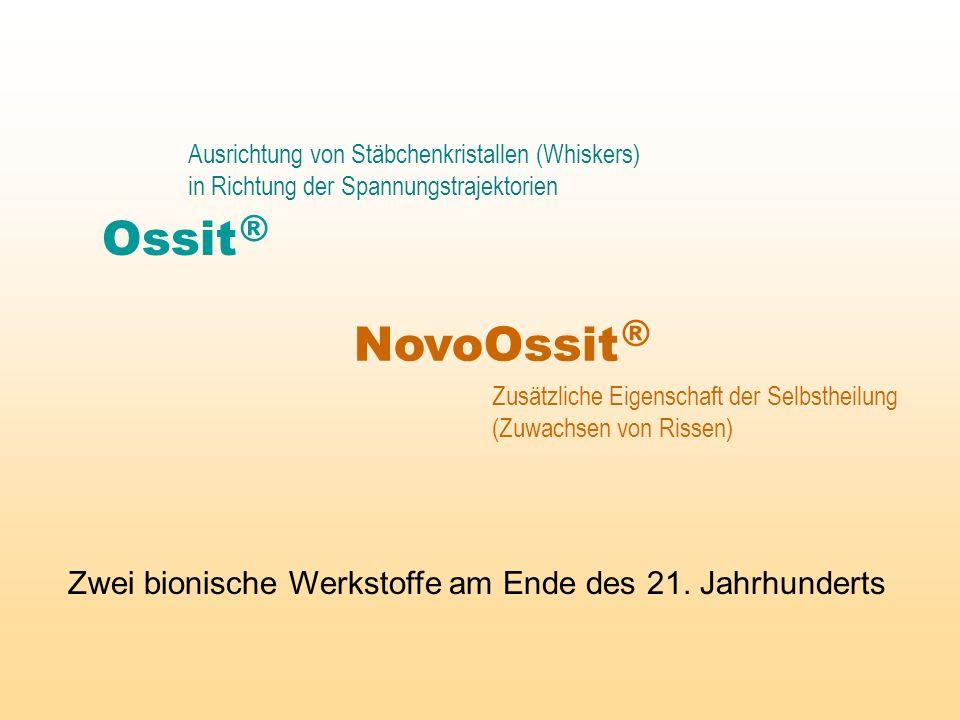 Ossit ® NovoOssit ® Zwei bionische Werkstoffe am Ende des 21. Jahrhunderts Ausrichtung von Stäbchenkristallen (Whiskers) in Richtung der Spannungstraj