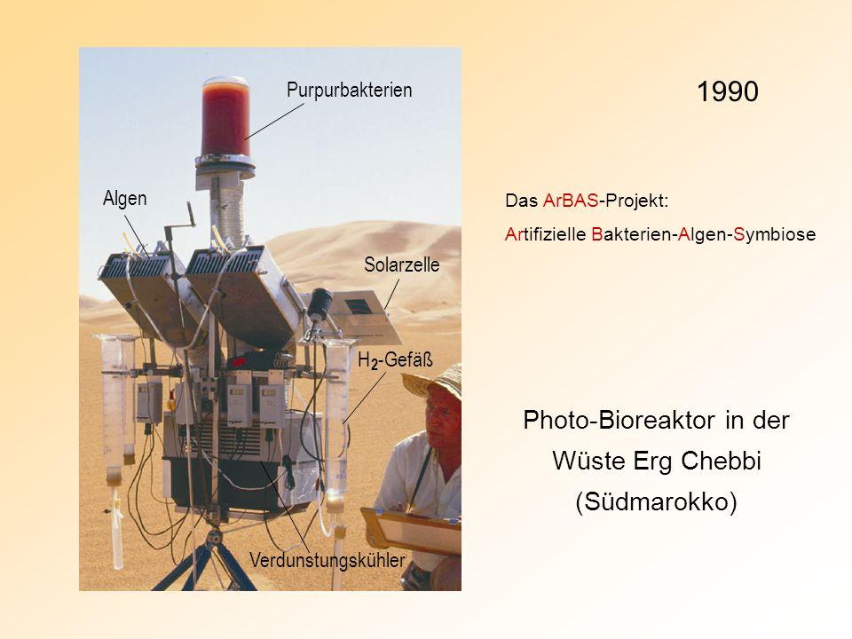 Photo-Bioreaktor in der Wüste Erg Chebbi (Südmarokko) Algen Purpurbakterien Solarzelle Verdunstungskühler H 2 -Gefäß 1990 Das ArBAS-Projekt: Artifizie