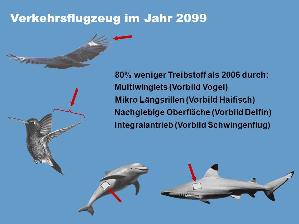 Verkehrsflugzeug im Jahr 2099 80% weniger Treibstoff als 2006 durch: Multiwinglets (Vorbild Vogel) Mikro Längsrillen (Vorbild Haifisch) Integralantrie