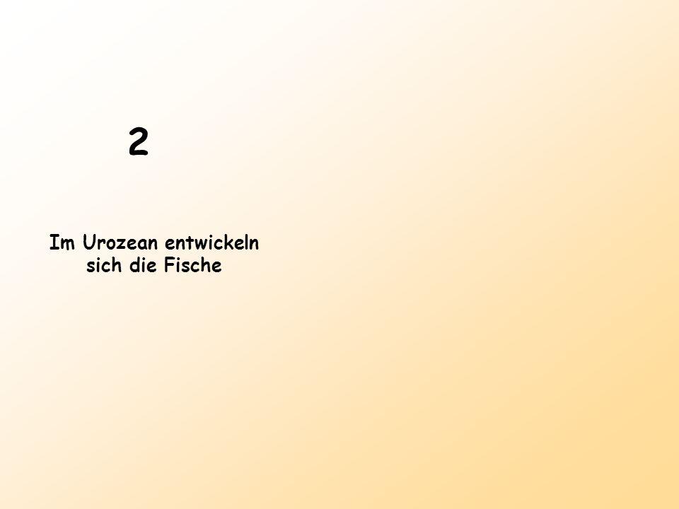 2 Im Urozean entwickeln sich die Fische