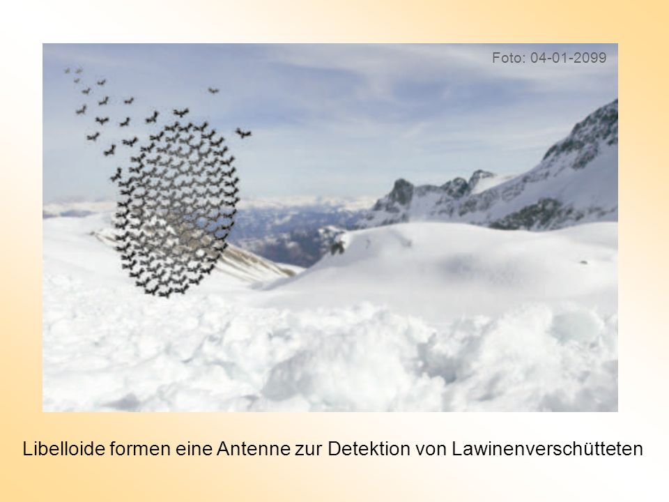 Libelloide formen eine Antenne zur Detektion von Lawinenverschütteten Foto: 04-01-2099