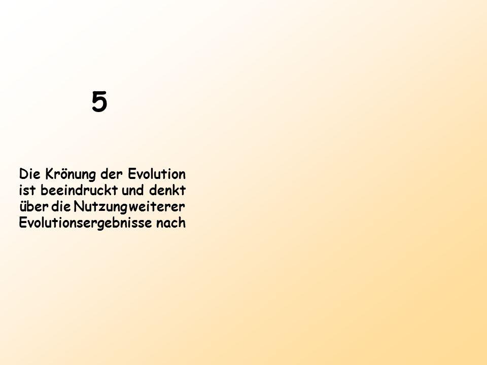 5 Die Krönung der Evolution ist beeindruckt und denkt über die Nutzung weiterer Evolutionsergebnisse nach
