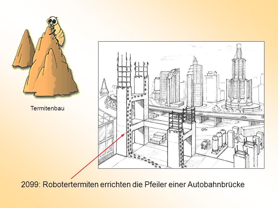 2099: Robotertermiten errichten die Pfeiler einer Autobahnbrücke Termitenbau