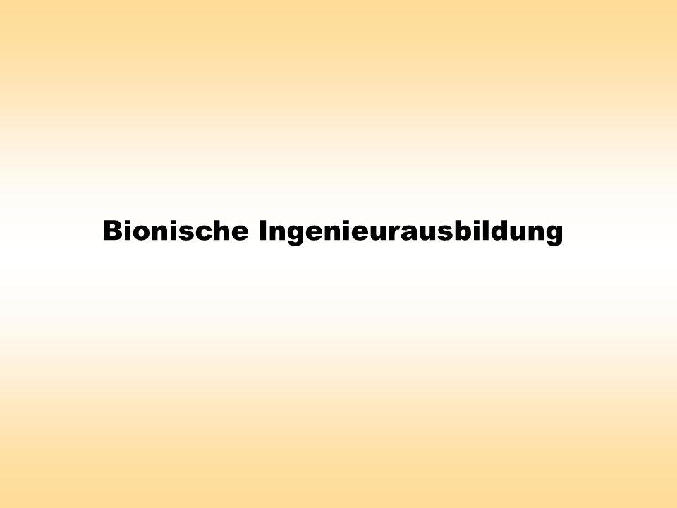 Bionische Ingenieurausbildung