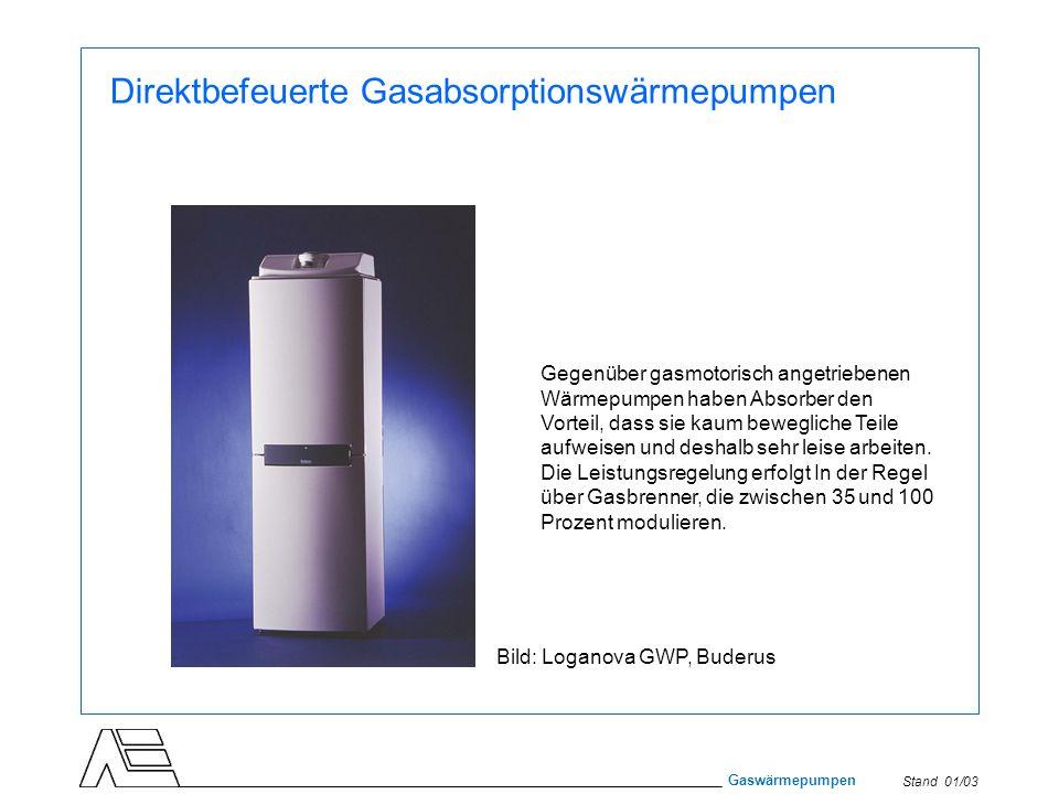 Stand 01/03 Gaswärmepumpen Direktbefeuerte Gasabsorptionswärmepumpen Gegenüber gasmotorisch angetriebenen Wärmepumpen haben Absorber den Vorteil, dass
