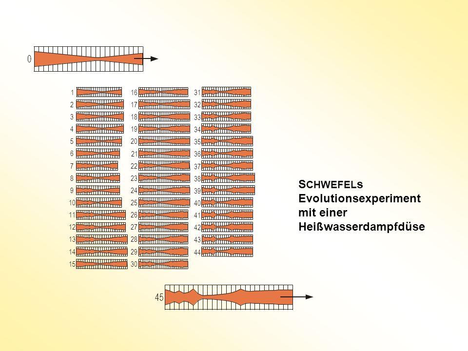 S CHWEFEL s Evolutionsexperiment mit einer Heißwasserdampfdüse 1 2 3 4 5 6 7 8 9 10 11 12 13 14 15 16 17 18 19 20 21 22 23 24 25 26 27 28 29 30 35 31