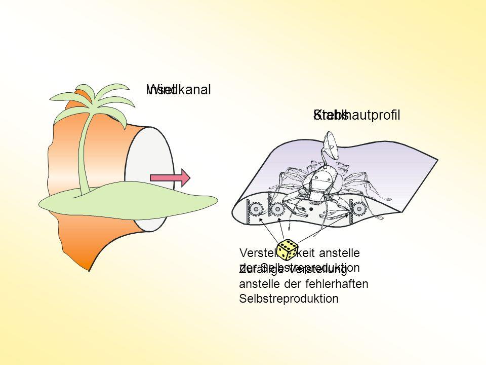 InselWindkanal KrebsStahlhautprofil Verstellbarkeit anstelle der Selbstreproduktion Zufällige Verstellung anstelle der fehlerhaften Selbstreproduktion