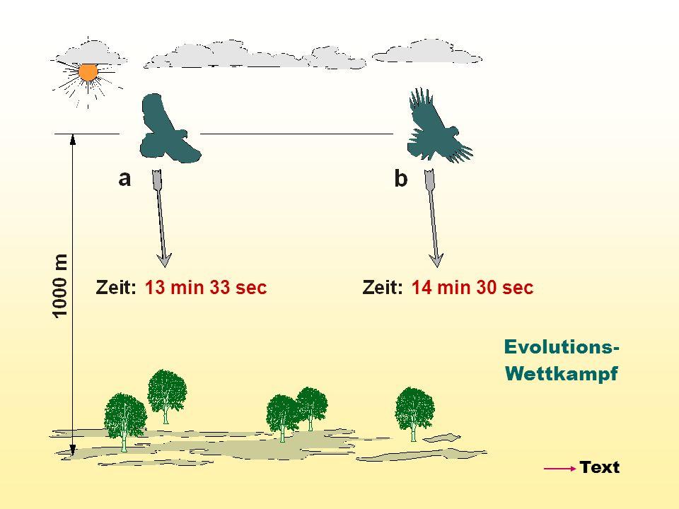 Evolutions- Wettkampf 13 min 33 sec14 min 30 sec Text