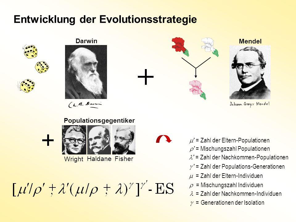 Entwicklung der Evolutionsstrategie ' = Zahl der Eltern-Populationen ' = Zahl der Nachkommen-Populationen = Zahl der Eltern-Individuen = Zahl der Nach