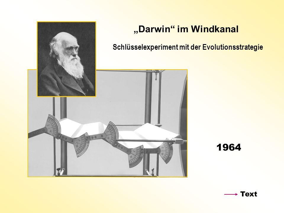 Darwin im Windkanal Schlüsselexperiment mit der Evolutionsstrategie 1964 Text