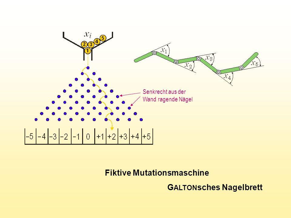 Fiktive Mutationsmaschine G ALTON sches Nagelbrett Senkrecht aus der Wand ragende Nägel