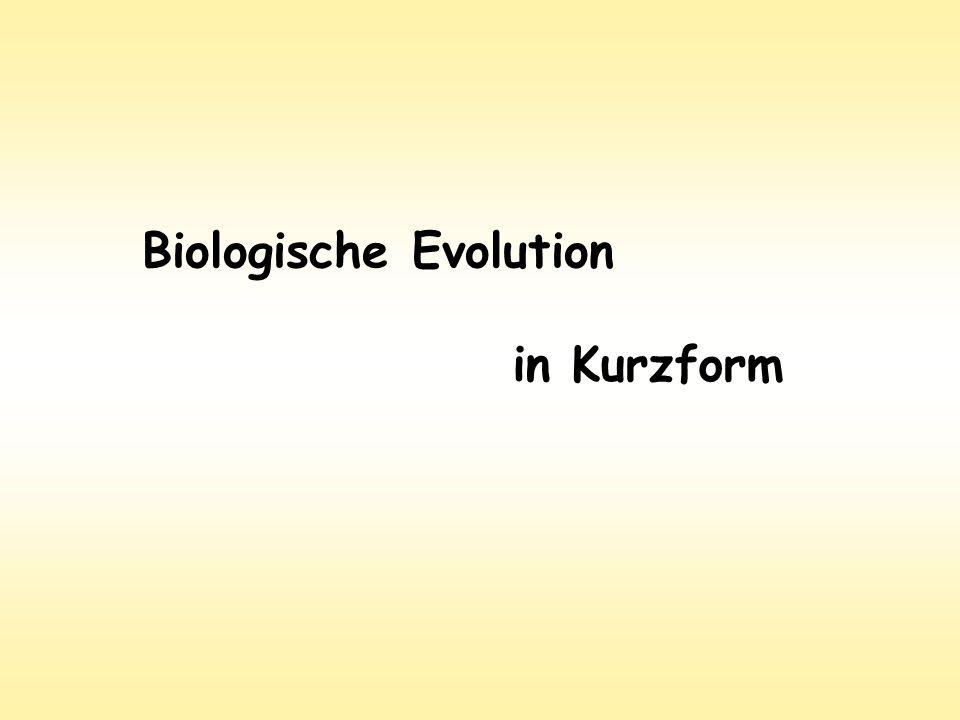 Biologische Evolution in Kurzform