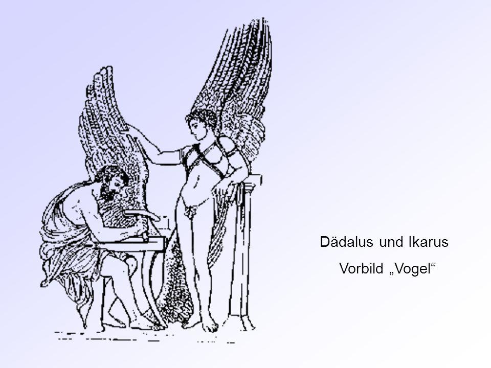Dädalus und Ikarus Vorbild Vogel